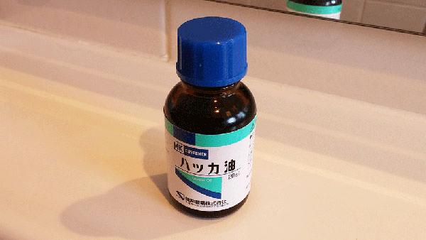ハッカ油の様々な使い方と消臭・虫除けなど効果の解説