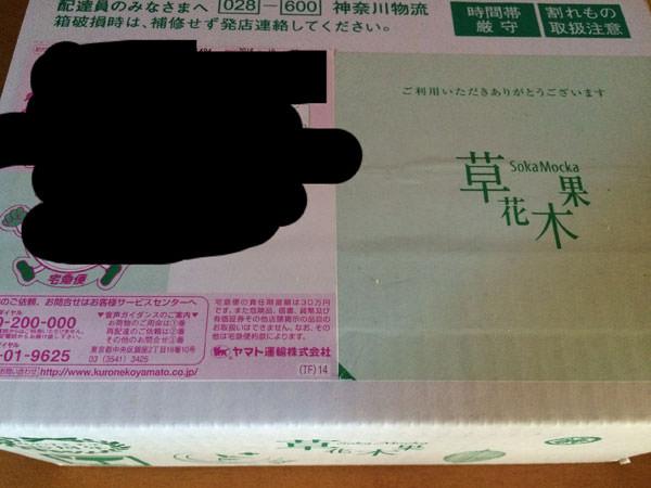 草花木果の緑茶シリーズをセットで購入