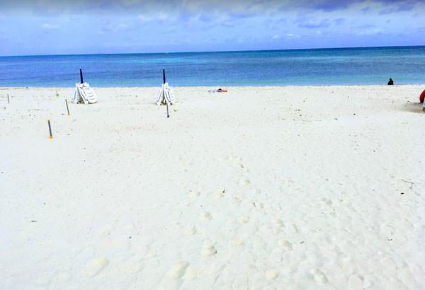 イーフビーチとは