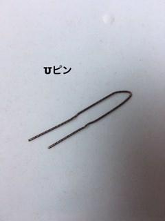 004pin-syurui
