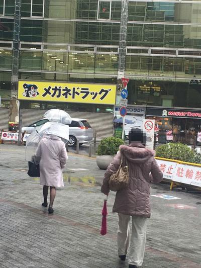 006lavoikebukuronishiikikata