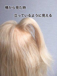 006sakagekotsu