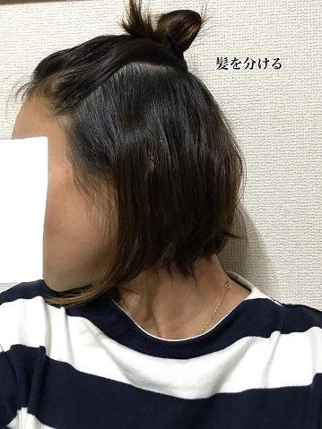 006wethair-hane