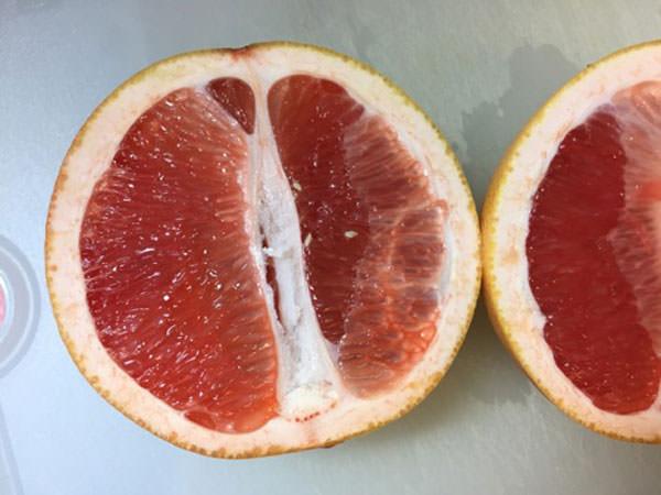 ピンクグレープフルーツのフルーツビネガーを作る