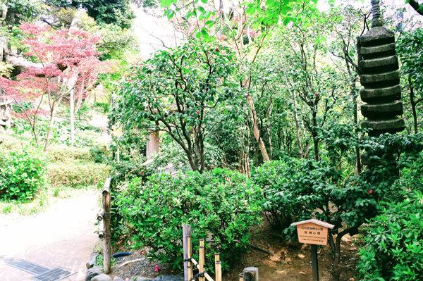 椿山荘の庭園 十三重の塔