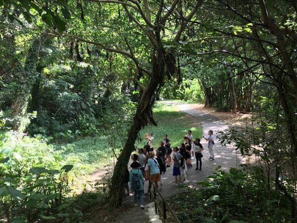 ガンガラーの谷の亜熱帯の森を歩きます