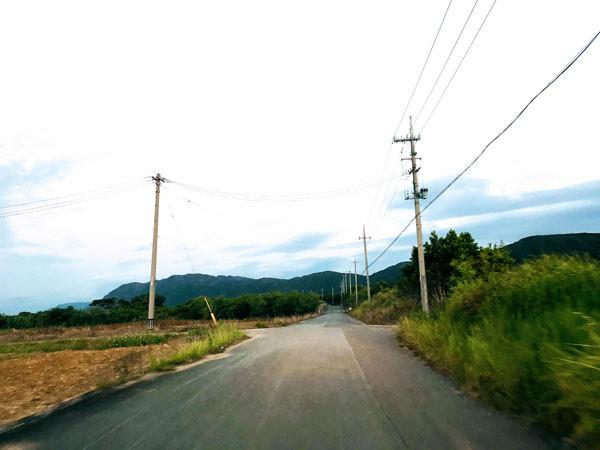 009_iriomote_drive