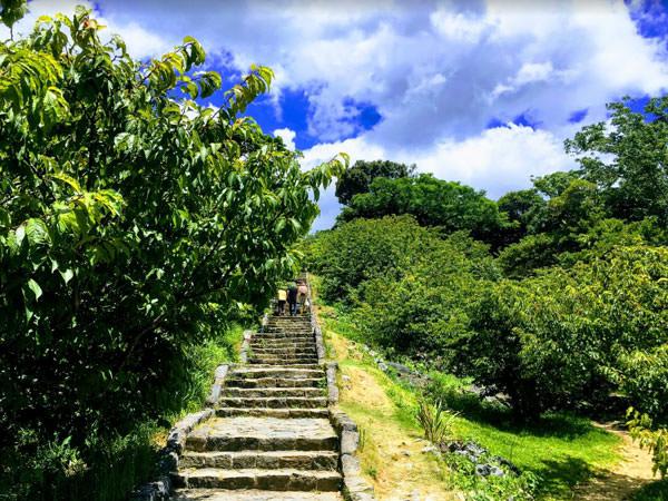 今帰仁城の石段