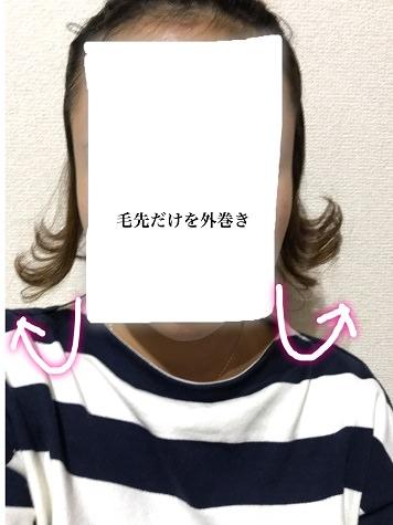 009wethair-hane