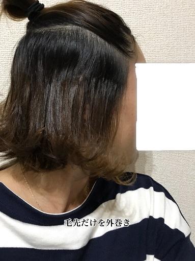 010wethair-hane