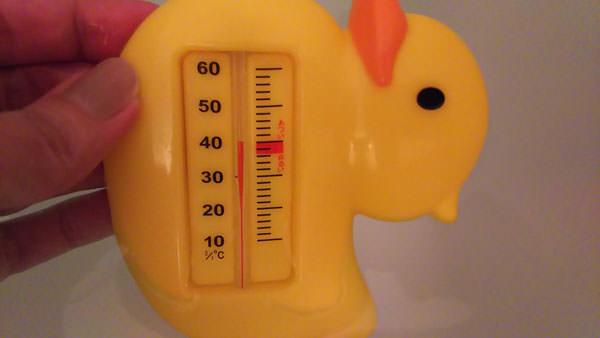ひよこの湯温計40度
