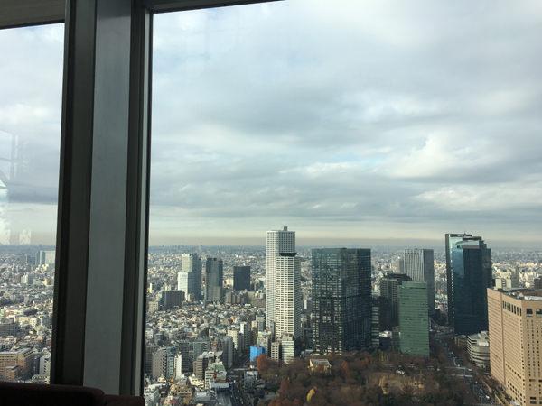 パークハイアット東京「ピークラウンジ」41階からの景色