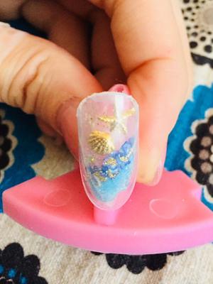 016aquarium-nail