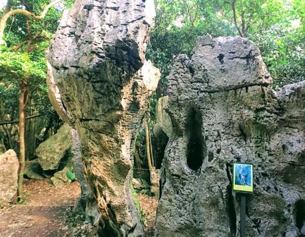 大石林山「縁結びの岩」