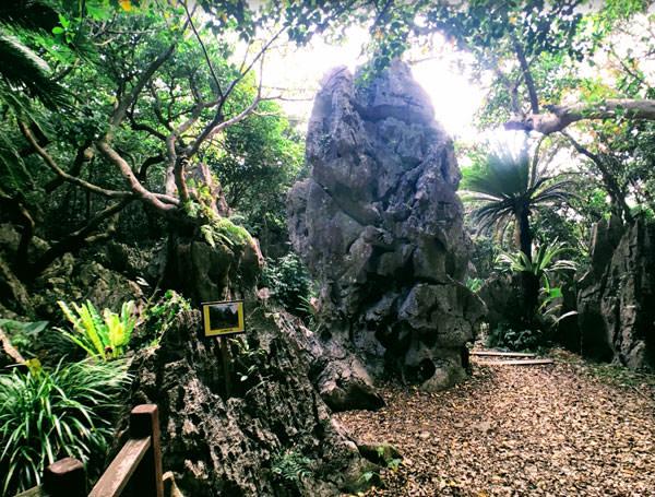 大石林山「立神の大岩」