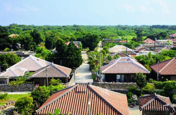 竹富島の街並みを上から堪能!「あかやま展望台」からの眺め