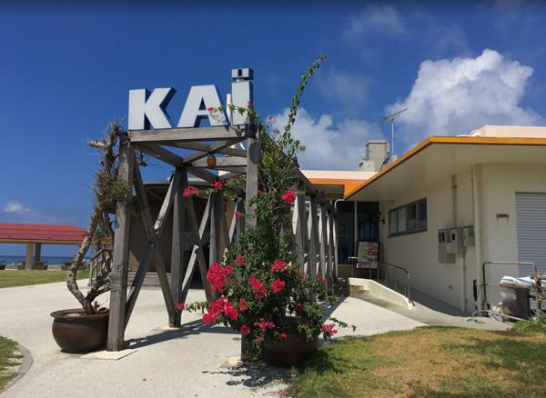 「kai  フリー画像 沖縄 美らさんビーチ パーティー」の画像検索結果