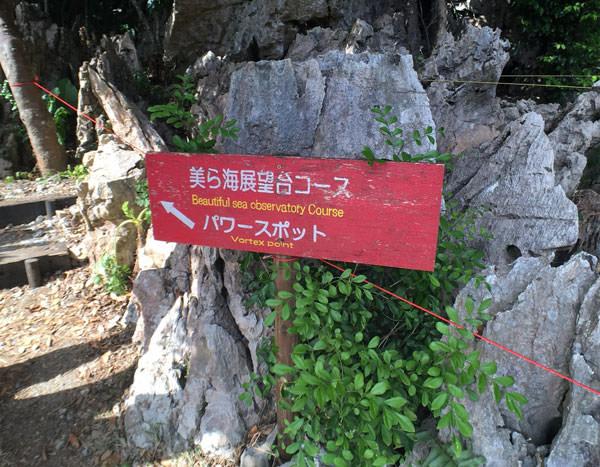 大石林山「美ら海展望台コース」