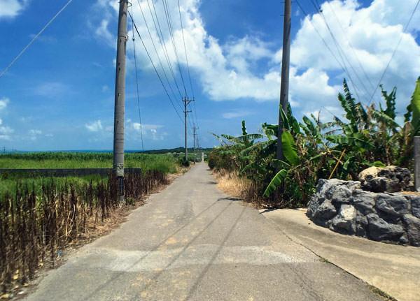 小浜島「シュガーロード」