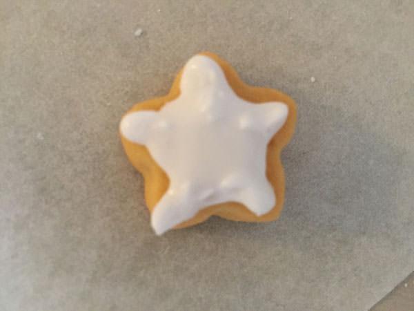 022icingcookie