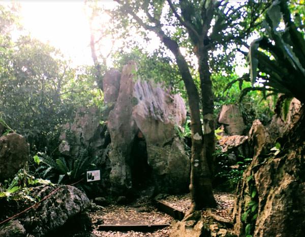 大石林山「輪廻 生まれ変わりの石」