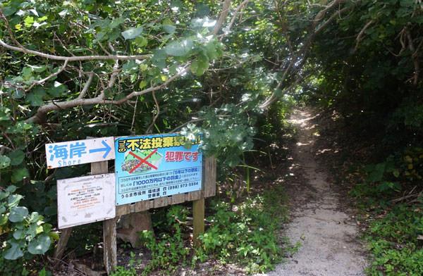 032_hamahiga_island