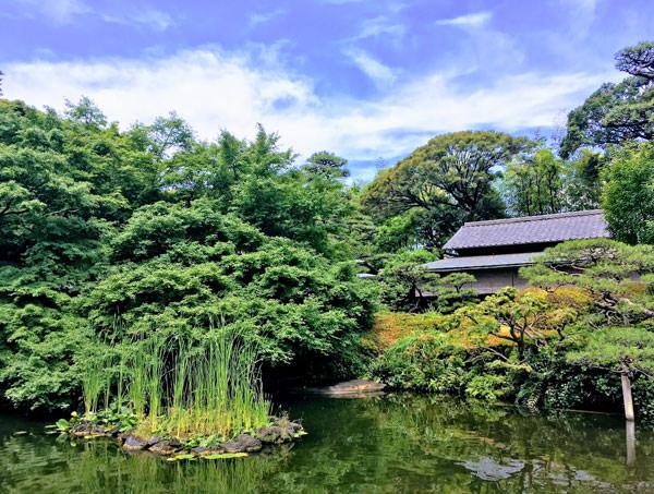 ホテルニューオータニ 清泉池