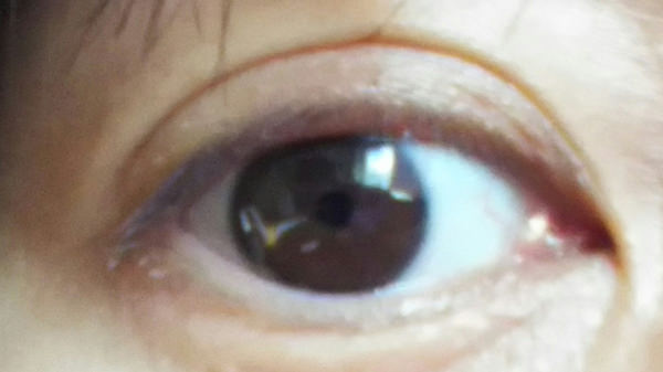 ケイト ラッシュマキシマイザー下地をつけた右目
