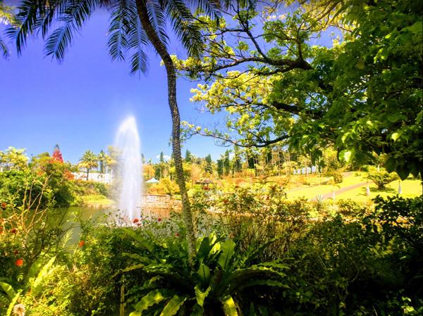 東南植物楽園とは
