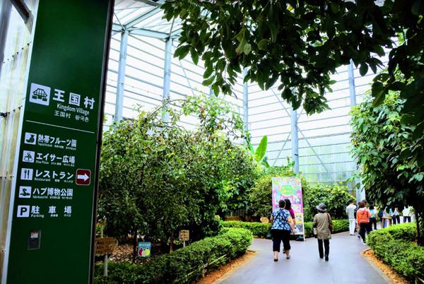 熱帯フルーツ園とパーラー