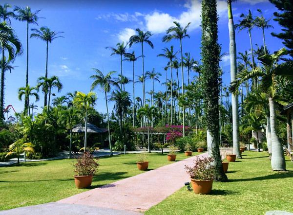 東南植物楽園 不思議の園