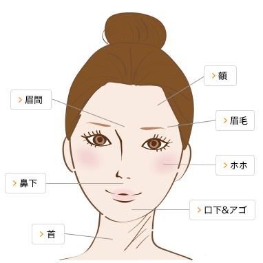 全顔脱毛セット施術範囲