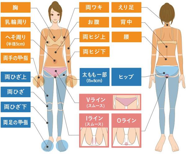 VIO(スムース)を含む全身脱毛 施術範囲