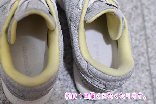 ashinioi_gra14