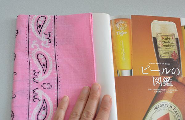 bdn_book3