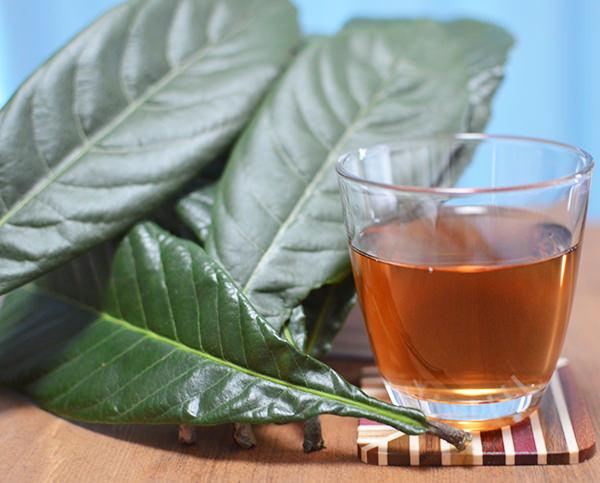 びわ茶【作り方・飲み方・効果】ねじめびわ茶と手作りの比較も