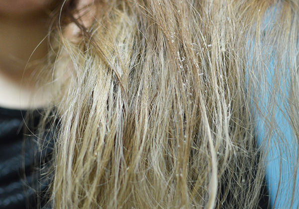 hairpack_bananabee5