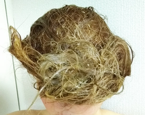 hairpack_oliveeggbee_tsu5