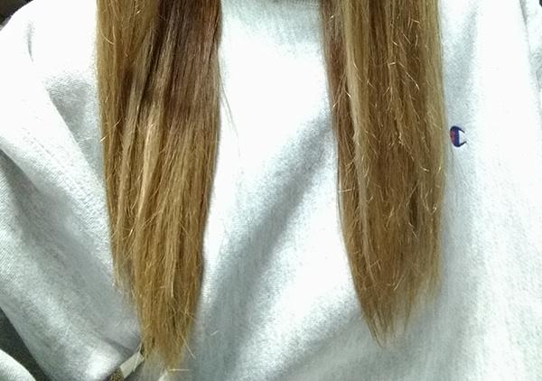 hairpack_oliveeggbee_tsu6