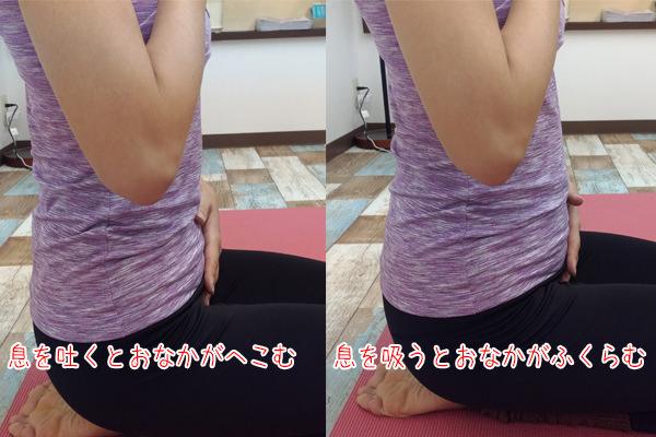hkn_yogakokyuhuku2_2