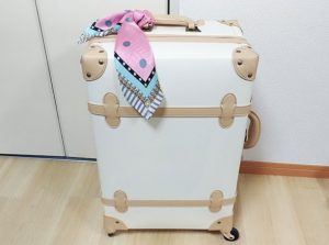 scarf_case