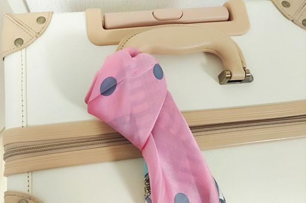 scarf_case2