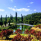 東南植物楽園【沖縄】植物と動物の癒しパワーを浴びる女子旅