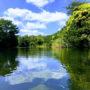 ビオスの丘【沖縄】行ってきた!亜熱帯の森に女子旅
