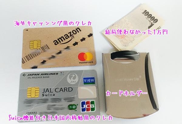 海外旅行に実際に持って行ったクレジットカードとお金